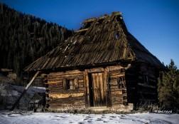 Casa parasita – coliba de pe deal