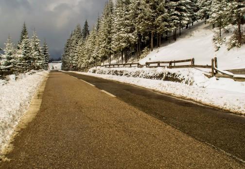 Toate drumurile duc spre Bucovina