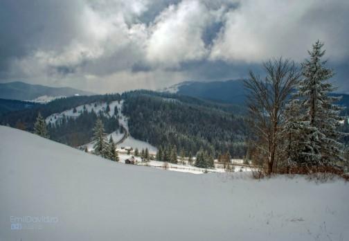 Iarna pe deal in Bucovina