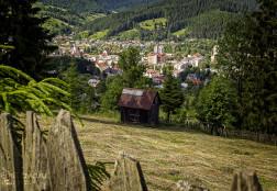 Ograda cu otava in Bucovina
